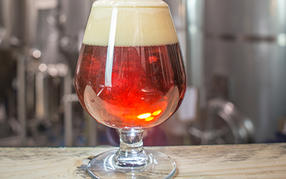 Brewers Association lists Top 50 US breweries 2014