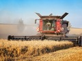 An odd trend in wheat country: not much wheat