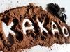 Dem Geheimnis um das perfekte Kakaoaroma auf der Spur: Forscher entschlüsseln Zusammenwirken von Einflussfaktoren vom Anbau bis zur Schokolade