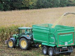 In sweet corn, workhorses win