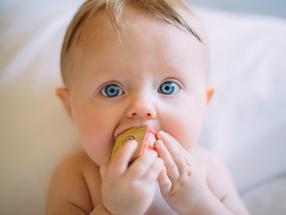 Ganz frühe Kindheit prägt Bakteriengemeinschaft im Darm