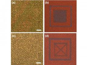 Mesoporous silicon nanowires