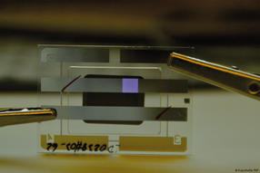 Zukunft der Lab-on-Chip-Anwendungen: Organische Elektronik