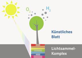Auf dem Weg zur künstlichen Photosynthese