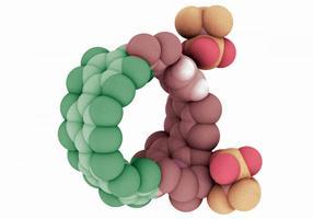 cycloparaphenylene nanohoops