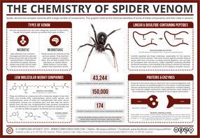 The Chemistry of Spider Venom