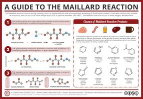 The Maillard Reaction - Food Chemistry