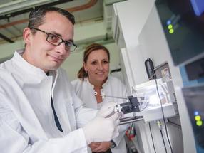 Einblick in Details des angeborenen Immunsystems: Forscher identifizieren potenzielle Ziele für neue Wirkstoffe