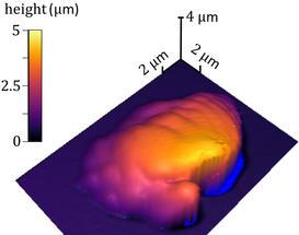 Neues Verfahren misst präzise 3D-Polymerbearbeitung