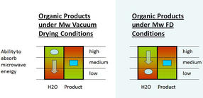 Microwave freeze drying of fruits & vegetables